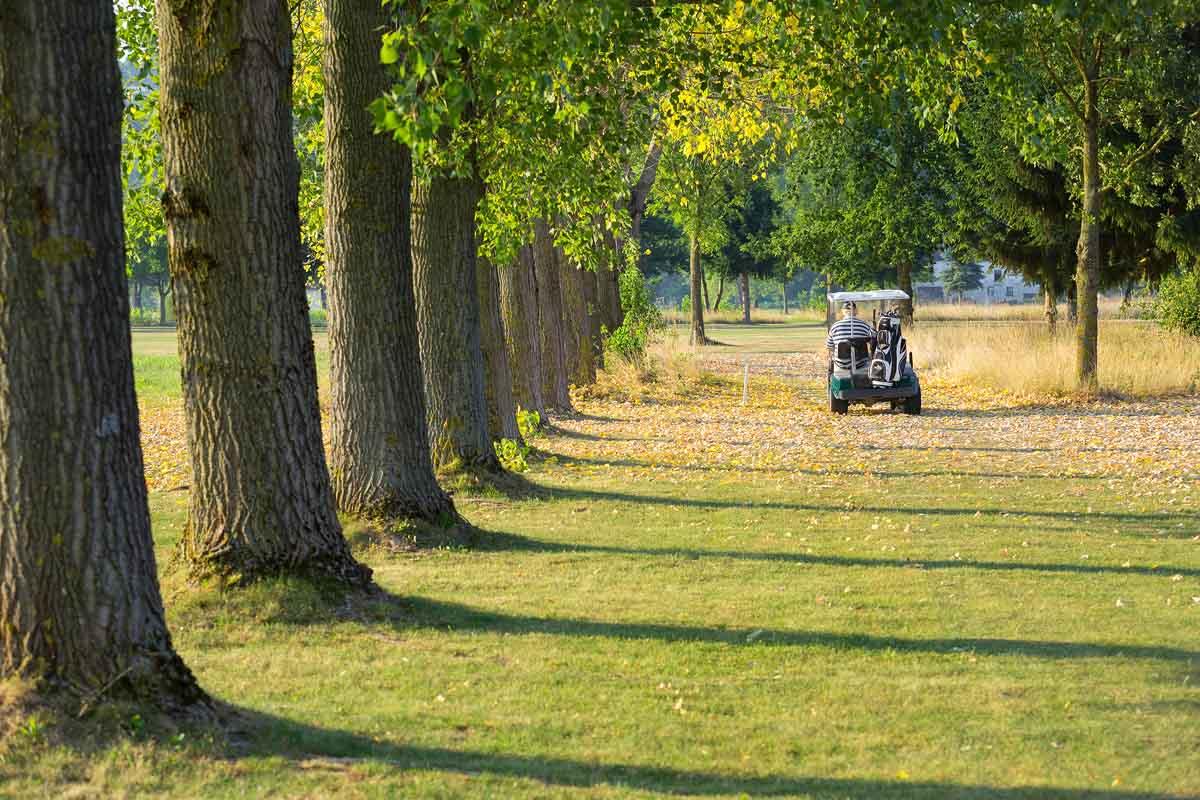 gc-schloss-ernegg-golfcart
